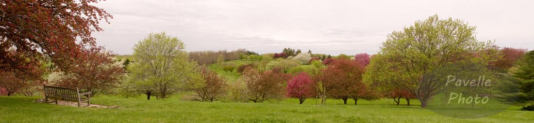 Highpoint Panorama